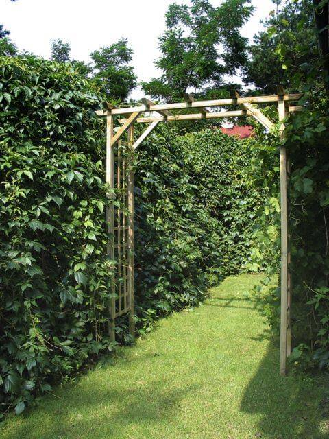 Urządzanie ogrodu
