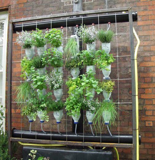 Zielone ściany ściany Wertykalne Gdy Powierzchnia Jest