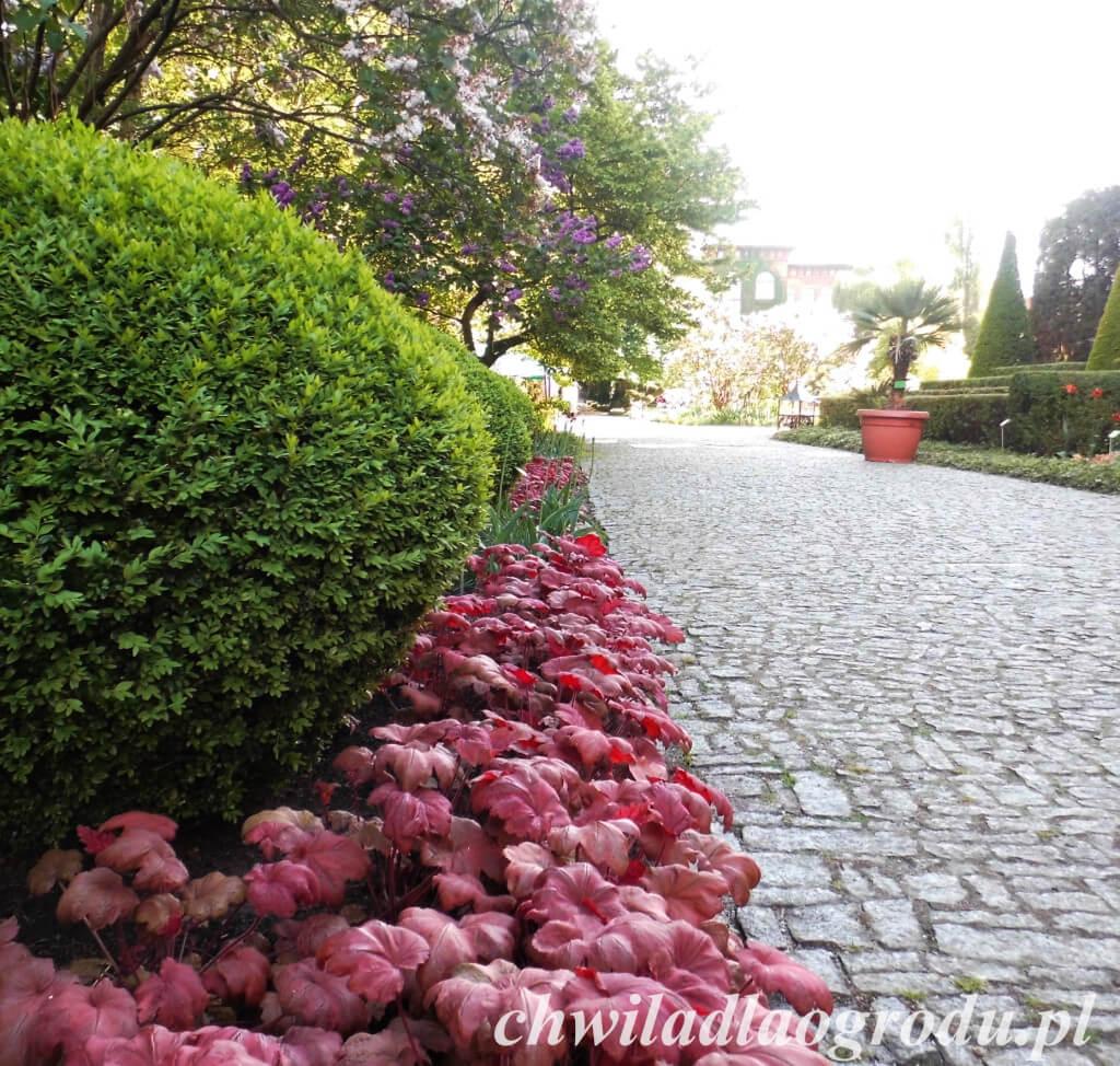 Projektowanie ścieżelk w ogrodzie