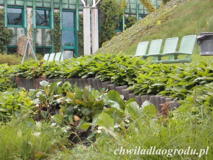 murki oporowe w ogrodzie