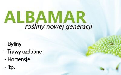 albamar.pl